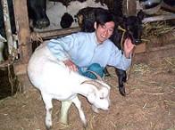平和牧場 榊原 政己